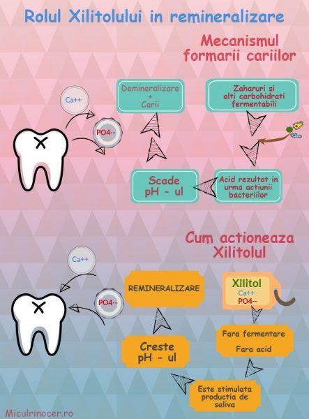 remineralizare dinti lapte, rolul xilitolului, cum se formeaza cariile, demineralizare dinti lapte