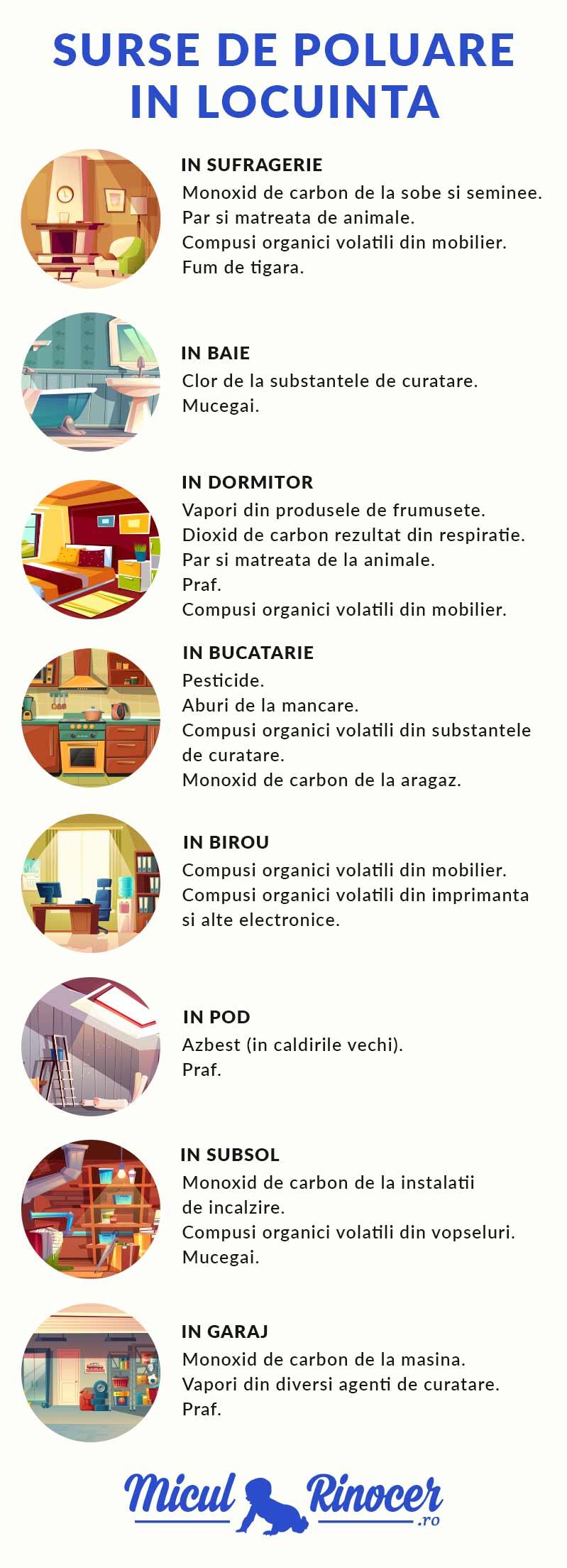 surse de poluare in locuinta - MiculRinocer.ro